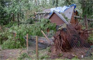 emergency roof repairs needed